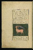 W.593, fol. 32a