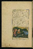 W.593, fol. 43a
