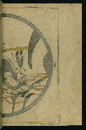 W.593, fol. 52b