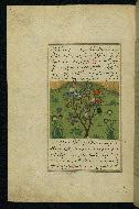 W.593, fol. 111a
