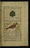 W.659, fol. 18b