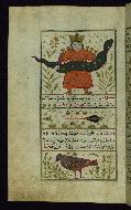 W.659, fol. 20a