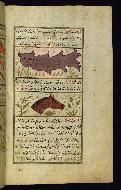 W.659, fol. 20b