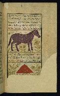 W.659, fol. 21b