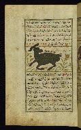 W.659, fol. 22a