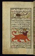 W.659, fol. 24a
