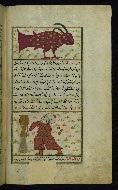 W.659, fol. 24b