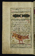W.659, fol. 25a
