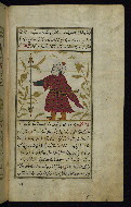 W.659, fol. 25b
