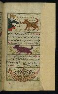W.659, fol. 26b