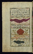 W.659, fol. 27a