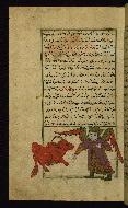 W.659, fol. 43a