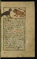 W.659, fol. 43b
