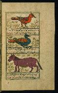 W.659, fol. 48b
