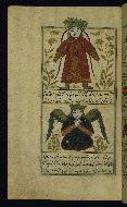 W.659, fol. 49a