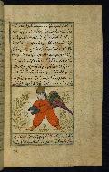 W.659, fol. 49b