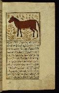 W.659, fol. 76b