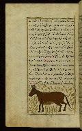 W.659, fol. 81a