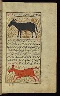 W.659, fol. 84b