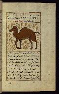 W.659, fol. 87b