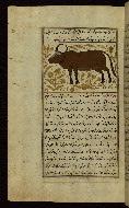 W.659, fol. 90a