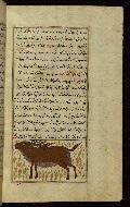 W.659, fol. 90b