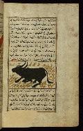W.659, fol. 91b