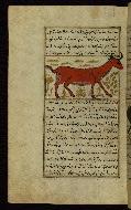 W.659, fol. 92a