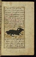 W.659, fol. 92b
