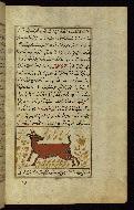 W.659, fol. 93b