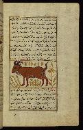 W.659, fol. 94b