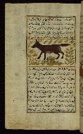 W.659, fol. 95a