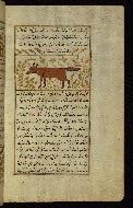 W.659, fol. 95b