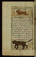 W.659, fol. 96a