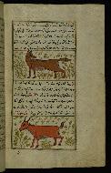 W.659, fol. 98b