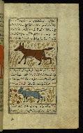W.659, fol. 103b