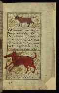 W.659, fol. 105b