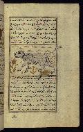 W.659, fol. 113b