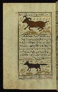 W.659, fol. 114a
