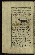 W.659, fol. 116a