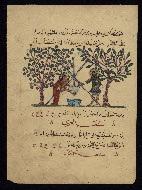 W.675, fol. W.675a