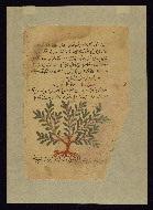 W.750, fol. W.750Ba